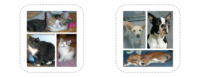 cats and dogs 4.PNG